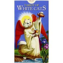 Gatos Blancos
