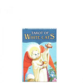 Pocket Gatos Blancos